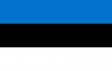 Ma lahendan eesti keele koduseid töid