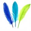 kirjutan kvaliteetseid, värvikaid ja paindlikke loometekste